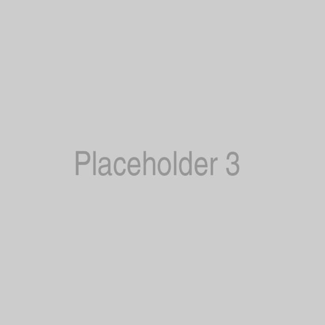 placeholder-3