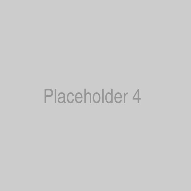 placeholder-4